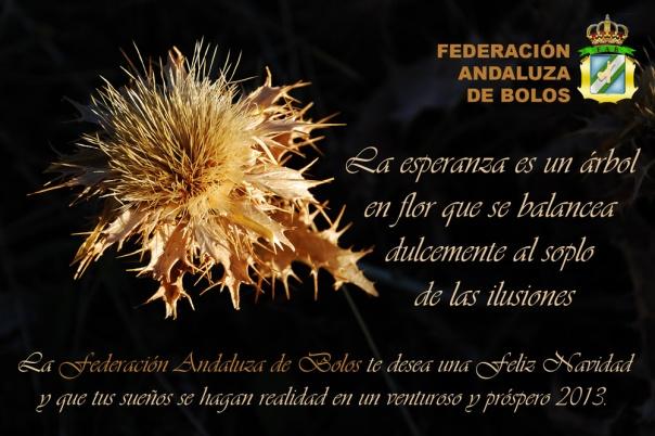 Feliz-Navidad-Federación-Andaluza-de-Bolos-2012-red