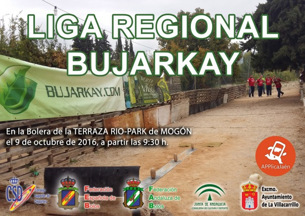 cartel-liga-regional-2016-copia-red