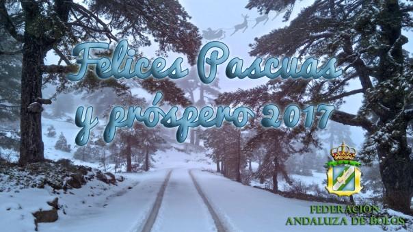 felicitacion-2016-copia